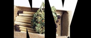 Is New York heading toward legalization of recreational marijuana?