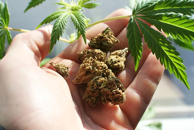 NFL's Reuben Foster arrested for marijuana possession