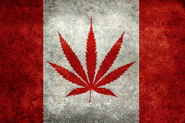 Canada legalizes marijuana; may influence US drug policy